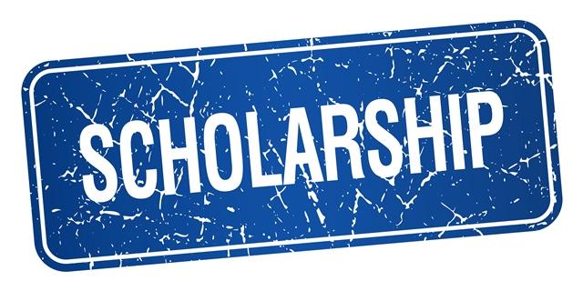 heinrich-boll-scholarships